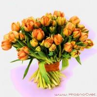 Букет из 49 тюльпанов